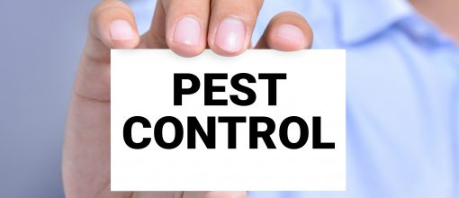 One of our online training courses is pest control